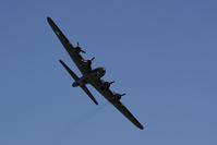 WW2 B17 Bomber 5