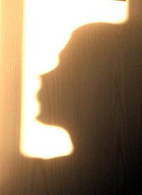 funny Shadows 4