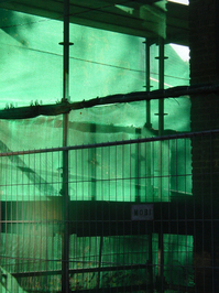 green scaffold