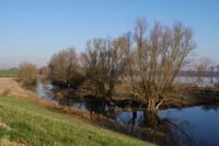 polder 2