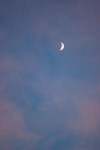 lapland sky
