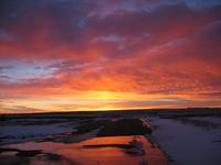 Alberta in the Morning