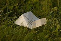 rubbish in the grass