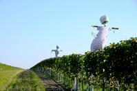 scarecrows 2010