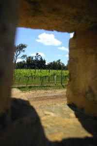 Doorway to Eden