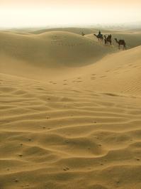 Rajasthan's Dune 1
