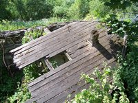 Fallen down hut