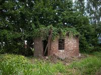 Dilapilated hut