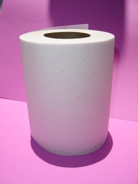 Sanitary Paper 1