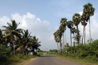 Road to Village