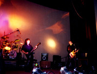 totaldeath show