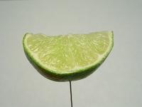 Lime wedge closeup 1