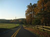 Sunny road 3