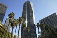 L.A. 2
