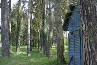 Dead cottage