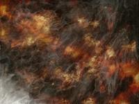 firey winds