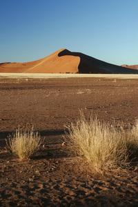 Namib desert, Namibia - Sand Dune