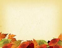 Leaf Collage 4