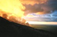 Tongariro geysers I