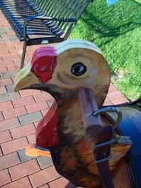 turkey head