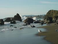 California Coast 3