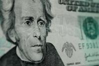 Twenty Dollar Bill Macro 2