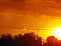 sunset [PL]