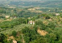 Montpulciano hills