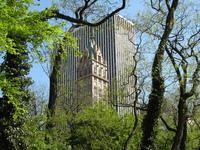 Trought Central Park