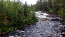 Norway river 1