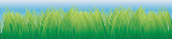 vector grass 1