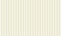 Line Pattern 01