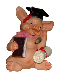 collegian pig