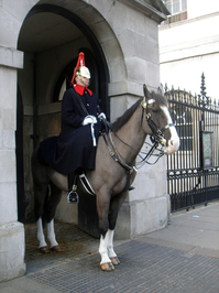 Buckingham Palace - Guards