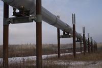 Alaskan Pipeline 4
