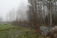 Swedish Mist