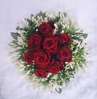 Winter Roses 2