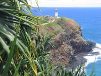 Kauai Lighthouse 4