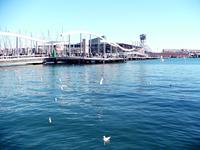 Port Vell 2