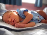 Baby Maximus