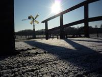 Frozen Bridge