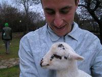 cres_damir&lamb