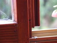 particular of windows