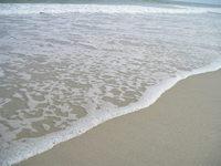 Sea soft shore
