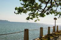 Anilao Coastline