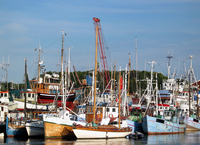 Gilleleje Harbour 3