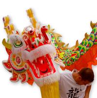 Dragon with Dragon Master