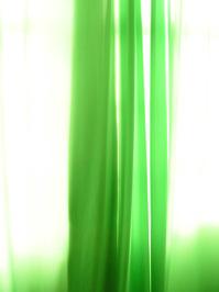 Green Enviroment 1