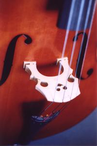 Upright bass top and bridge