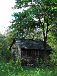 little house in a country